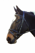 GFS Leather Flash Bridle
