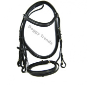 Leather Horse Bridle Equestrian Flash Full Cob Pony in Black & Brown with Reins