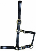 GFS Mark 1 Leather Headcollar