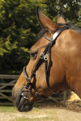 Heritage English Leather In-Hand Horse Bridle