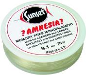 Sunset Amnesia Clear Memory Free Monofilament