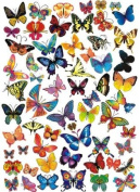 Pema Wall Sticker w549 merrily multicoloured butterflies printed and prepunched on DIN A4 sheet