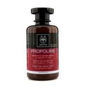 Hair Care - Apivita - Shampoo with Sunflower & Honey (For Coloured Hair) 250ml/8.5oz