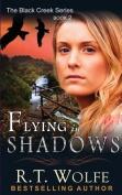 Flying in Shadows