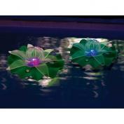 Swimways Ocean Art - Lotus Flowers