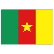 Cameroon Flag 1.5m x 0.9m