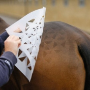 Quarter Marker / Plastic Show Stencils For Horses, Triangle Pattern