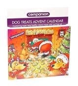Companion Dog Treat Advent Calender