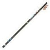 Lineaeffe 6 Metre Telescopic Fishing Whip Pole