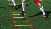 4m Speed Training Agility Ladder With Carry Bag