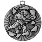 medal Judo ~50mm silber