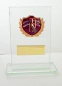 15cm x 10cm GLASS CRICKET TROPHY