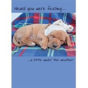Bandaged Pup Occasions Card Collection
