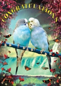 Congratulations Greetings Card - Budgerigars - by Max Hernn
