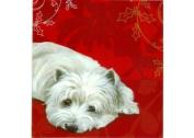 Westie Christmas Cards Brandy Snap by Pollyanna Pickering