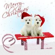 "Westie / White Highland Terrier ""Winter Westie"" Luxury Twin Christmas Card Pack"