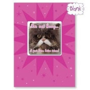Bossy - Cat Blank Magnet Card