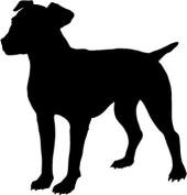Jack Russell Dog Car,Camper Van Window Sticker Decals