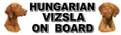Car Sticker - HUNGARIAN VIZSLA ON BOARD