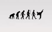 Juko Karate Evolution Wall Sticker Decal Small 57cm Wide. Black