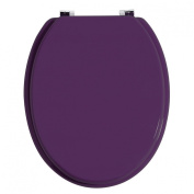 Accesorios Toilet Seat Purple Zinc Alloy Fittings Awesome New Design