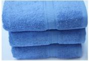 Egyptian Cotton Luxury Bathroom Towels 640g/m2 Bath Towel 70x130 cm approx. Blue