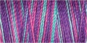 Gutermann Sulky Variegated Cotton (for Machine Embroidery) No 30 300m - 4110