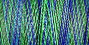 Gutermann Sulky Variegated Cotton (for Machine Embroidery) No 30 300m - 4016