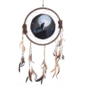 Wolf Dreamcatcher, Wolf Howling at Moon