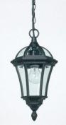 Endon YG-3503 YG-3503 Outdoor Lantern