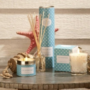The Country Candle Company Polka Dot Scented Candle In Tin - Seashore