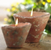 St Eval English Hedgerow Scented Candle Pot (large) - Indoor/outdoor - Dewberry