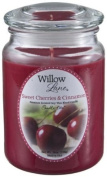 560ml CHERRY AND CINNAMON SCENTED CANDLE (WILLOW LANE) by candle-lite