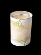 Prices Lantern Candle Winter Jasmin Fragranced 40 Hours
