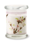 Stoneglow - Bloom Apple Blossom Candle Jar