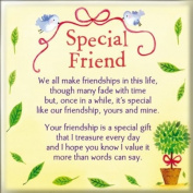 Fridge Magnet - Special Friend