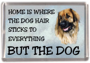 "Leonberger Fridge Magnet ""HOME IS WHERE THE DOG HAIR STICKS TO EVERYTHING BUT THE DOG"""