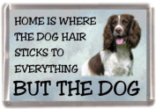 "English Springer No 1 Fridge Magnet ""HOME IS WHERE THE DOG HAIR STICKS TO EVERYTHING BUT THE DOG"""