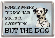 "Dalmatian Fridge Magnet ""HOME IS WHERE THE DOG HAIR STICKS TO EVERYTHING BUT THE DOG"""