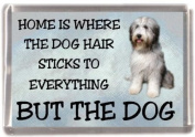 "Bearded Collie Fridge Magnet ""HOME IS WHERE THE DOG HAIR STICKS TO EVERYTHING BUT THE DOG"""