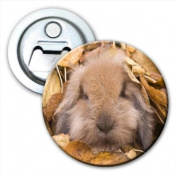 Cute Furry Cuddly Bunny Rabbit In Leaves Bottle Opener Fridge Magnet