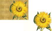 Caspari Entertaining with Caspari Sunflower Boxed Blank Notecard