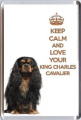 A fridge magnet with a picture of a Black & Tan Cavalier King Charles Spaniel with the words KEEP CALM AND LOVE YOUR KING CHARLES SPANIEL from our KEEP CALM and CARRY ON range. A unique Birthday or Christmas stocking filler gift idea for a ..