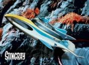 Stingray FRIDGE MAGNET 616