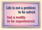 Life is not a Problem to be Solved...Large Fridge Magnet