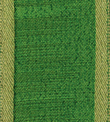 Caspari Entertaining with Caspari Holiday 1-1/ 5.1cm Width Raw Silk Wired Ribbon, Green