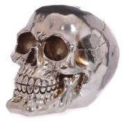 Mirror Effect Silver Skull Money Box