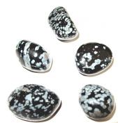 5 Polished Snowflake Obsidian
