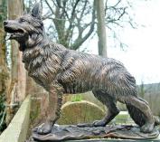 Fabulous German Shepherd in Cold Cast Bronze