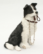 Sitting BORDER COLLIE Dog Ornament - From The Walkies Range Of Collectable Dogs By Leonardo